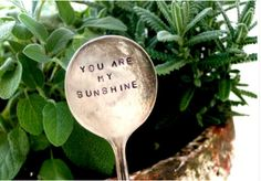 """You are My Sunshine"" herb/garden marker"