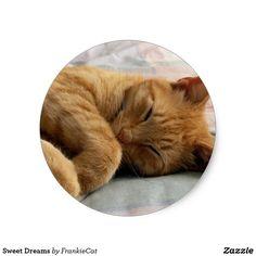 Sweet Dreams Classic Round Sticker