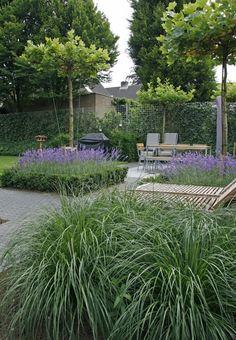 Back garden examples inspiration for back gardens! Big Garden, Garden Pool, Tropical Garden, Dream Garden, Garden Kids, Garden Plants, Back Gardens, Outdoor Gardens, Contemporary Garden
