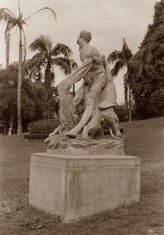 Praça Buenos Aires, 1953. Estátua Hércules atacado. São Paulo do Passado