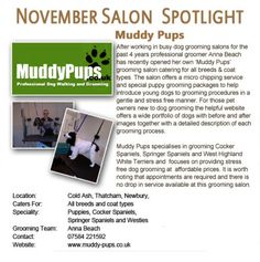 Salon Spotlight November 2011, Muddy Pups