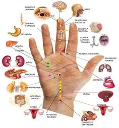 natural remedies of high blood pressure Lovely Nails lovely nails hours Acupuncture, Acupressure Treatment, Massage Logo, Massage Quotes, Massage Girl, Self Massage, Logo Restaurant, Clinique Chiropratique, Massage Marketing