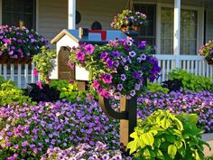 Mailbox idea, so pretty with the flowers!