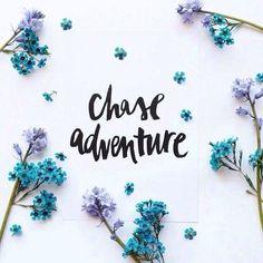 Chase Adventure! <3
