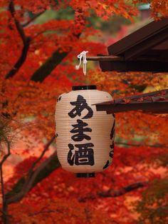 清水寺, which translates to Kiyomizu Temple Japanese Paper Lanterns, Chinese Lanterns, Japanese Culture, Japanese Art, Japanese Gardens, Japanese Wine, Japanese Interior, Japanese Beauty, Akatsuki