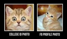 How Personal Pictures Work