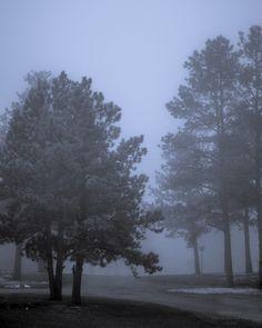 https://flic.kr/p/FYGHj5 | 20160418-Morning fog. | #dakota #POTD #Day1570 #foggy #sdwx #BlackHills #SouthDakota