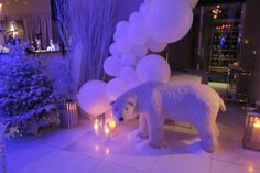The polar bear is finally in courchevel  event, luxuria, courchevel, narnia, birthday, kids Cannes, Monaco, Cap D Antibes, Courchevel 1850, Birthday Kids, Ferrat, Event Organization, Kids Events, Bar Mitzvah