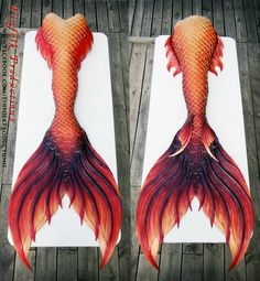 Finfolk – Page 7 – Mermaid Tail Collection Finfolk Mermaid Tails, Mermaid Swim Tail, Mermaid Fin, Mermaid Swimming, Mermaid Tale, Tattoo Mermaid, Mermaid Board, Mermaid Swimsuit, Real Life Mermaids