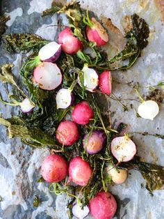 Roasting radishes is one of the best kept secrets. They change from sharp peppery things to sweet juicy jewels. Serve it as a perfect side-dish! Easy to grow too. The post Sweet and Sexy Roasted Radish Recipe appeared first on The Organic Gypsy. Root Vegetables, Growing Vegetables, Health Benefits Of Radishes, Healthy Foods, Healthy Recipes, Roasted Radishes, Radish Recipes, How To Make Pesto, Tahini Dressing