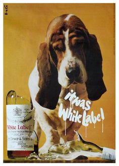 rare original vintage 1967 WHITE LABEL whisky poster - HUSH PUPPY dog #PopArt
