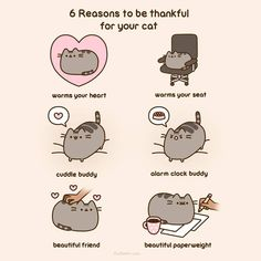 6 Reasons to be Thankful For Your Cat | Pusheen
