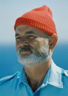 Most Likes and Repins will be this year's costume.  Bill Murray