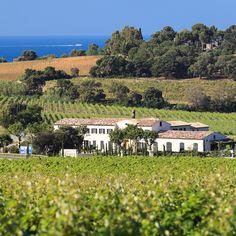 Domaine de La Croix et de la Bastide Blanche à Saint Tropez en Provence, France. Des grands rosés qui méritent leur titre de Cru Classé.