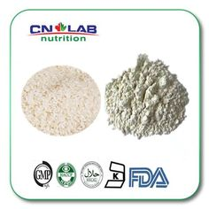 Find More Slimming Creams Information about New Arrival Wholesale Bulk Organic Rice Protein Isolate Supplier 1kg,High Quality rice glass,China protein power Suppliers, Cheap rice method from Cnlab Pharma Ltd on Aliexpress.com