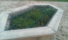 Herb planter so the horses can't get to the roots