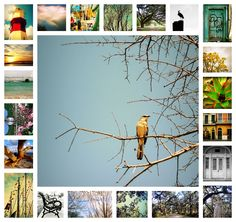 Prints sold in my Etsy shop in 2012. Thank you!