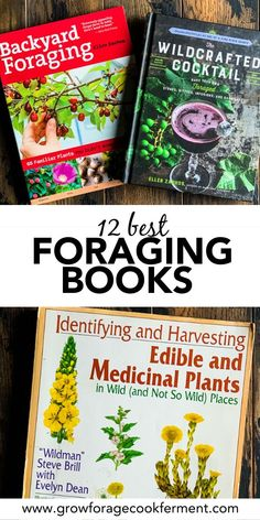Here are the 12 best books on foraging and wildcrafting. These books will give you a great start on how to find, identify, harvest, and use wild plants! 12 Best Books on Foraging and Wildcrafting Diy Herb Garden, Herb Garden Design, Garden Bed, Garden Ideas, Healing Herbs, Medicinal Plants, Edible Wild Plants, Wild Edibles, Gardening Books