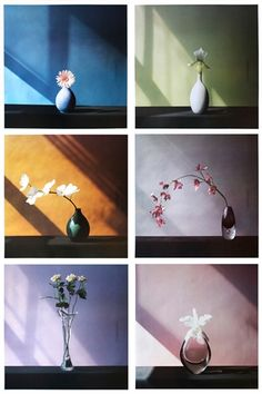 Bid now on 6 Flowers (Complete set of 6 Works with colophon) by Robert Mapplethorpe. View a wide Variety of artworks by Robert Mapplethorpe, now available for sale on artnet Auctions. Object Photography, Still Life Photography, Artistic Photography, Color Photography, Nature Photography, Still Life Images, Still Life Art, Ikebana, Flower Images