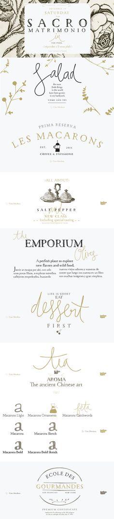 22 Best Selling Beautiful Fonts - http://www.designcuts.com/design-cuts-deals/21-best-selling-beautiful-fonts/