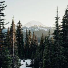 Stunning Adventure Photography by Cameron Anderson Adventure Photography, Nature Photography, Digital Photography, Photography Tips, Nature Collection, The Mountains Are Calling, Exotic Plants, Nature Photos, Nice View