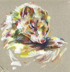 #ferret #art By Nuance (http://nuancescurieuses.tumblr.com/)