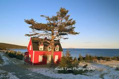 Salt box house Newfoundland Newfoundland Canada, Newfoundland And Labrador, Salt Box, Box Houses, Salt And Water, Getting Old, I Fall In Love, Folk Art, North America