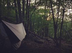 This home I love #hammocklife #livinginthewoods #chiapet hiking the #appalachiantrail by @nayturelover