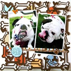 Dog Bones Lace Scrapbooking Cardstock  Good layout for Snickers!