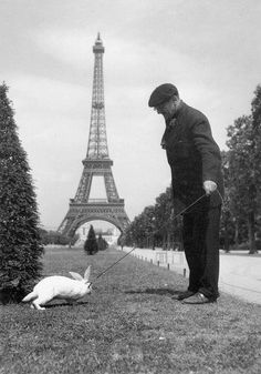 Robert Doisneau  //   Paris in occupied, a man taking his rabbit for a walk at the champ de Mars, Paris, 1940s © Atelier Robert Doisneau