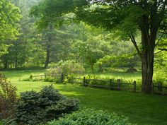 Homestead Cottage Grounds - Located in historic Grafton, Vermont