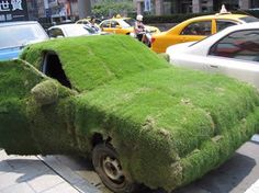 Crazy Grass-Covered Car...yes, there is always a place for a gardener to do his thing, even in the midst of the city.