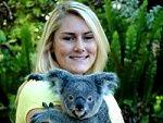 Kuranda Koala Gardens - Cairns Queensland- one of the few places left where holding a koala is allowed
