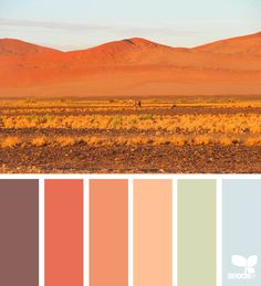 today's inspiration image for { color view } is by . thank you, Caroline, for sharing your amazing photo in ! Colour Pallette, Colour Schemes, Color Combos, Design Seeds, Desert Colors, World Of Color, Color Swatches, Color Stories, Color Theory