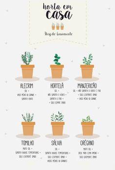 Mini horta em casa   http://www.blogdocasamento.com.br