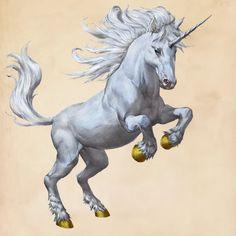 Unicorn | Harry Potter Wiki | FANDOM powered by Wikia