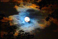 Harvest moon by ByGaddArtandDesign on Etsy