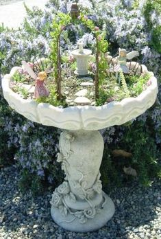 Birdbath Fairy Garden    Below is a list of plants that work well in fairy gardens.    Baby Tears  Ferns  Creeping Thymes  Irish Moss  Jade Trees  Succulents  Sedums  Rosemary  Dwarf Conifers  Dwarf Boxwoods   Moss  Mini African Violets  Bonsai trees such as Schleffera, Ficus or other varieties