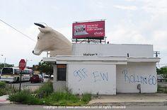 Mack Avenue Cow head | dETROITfUNK
