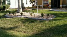 Landscape concrete curbing in Cape Coral Fl.  See more at http://msdcurbing.com
