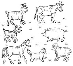 Farm Animal Coloring Pages, Coloring Pages For Boys, Colouring Pages, Coloring Books, Farm Animals Pictures, Silkie Chickens, Farm Projects, Square Quilt, Preschool Activities