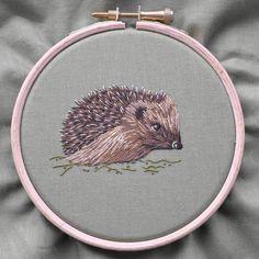 Silk shaded hedgehog. RSN
