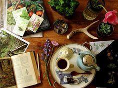 Headache Remedy Tea  3 tsp Lavender 3 tsp Chamomile 3 tsp Rosemary 3 tsp Mint