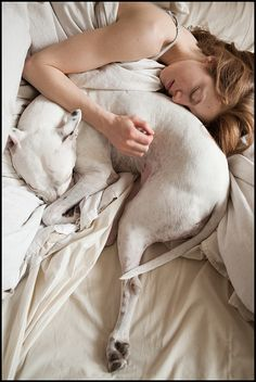 Too sad this is only the expectation of sleeping with a dog, they are actually big bed hogs!