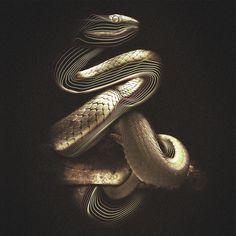 Pseudogeneratative snake illustration. Illustrator photoshop