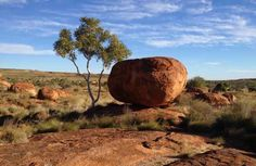 Naturally clustered round boulders referred to as Devil's Marbles in the Outback.