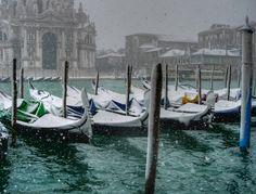 Venice in White