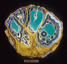 a nodule of green variscite with yellow crandallite and blue/gray wardit