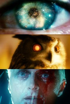 """If only you could see what I've seen with your eyes."" Blade Runner (1982)"