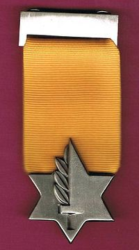 Medal of Valor— The Medal of Valor (Hebrew: עיטור הגבורה, Itur HaGvura) is the highest Israeli military decoration. Equivalent to the America Medal of Honor. Military Orders, Military Guns, Military History, Israel, War Of Attrition, Military Awards, Idf Women, Military Decorations, Second Lieutenant